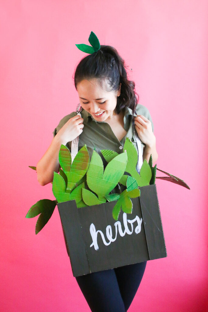 Plant costume made from cardboard to reuse packaging