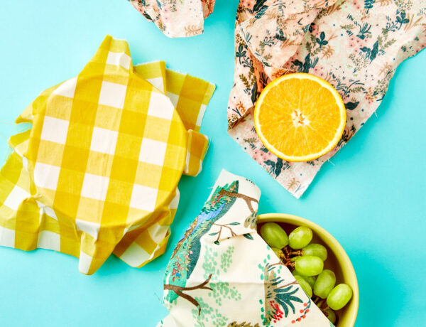 How to make your own beeswax wraps: bowl, grapes, and an orange wrapped in DIY beeswax wraps