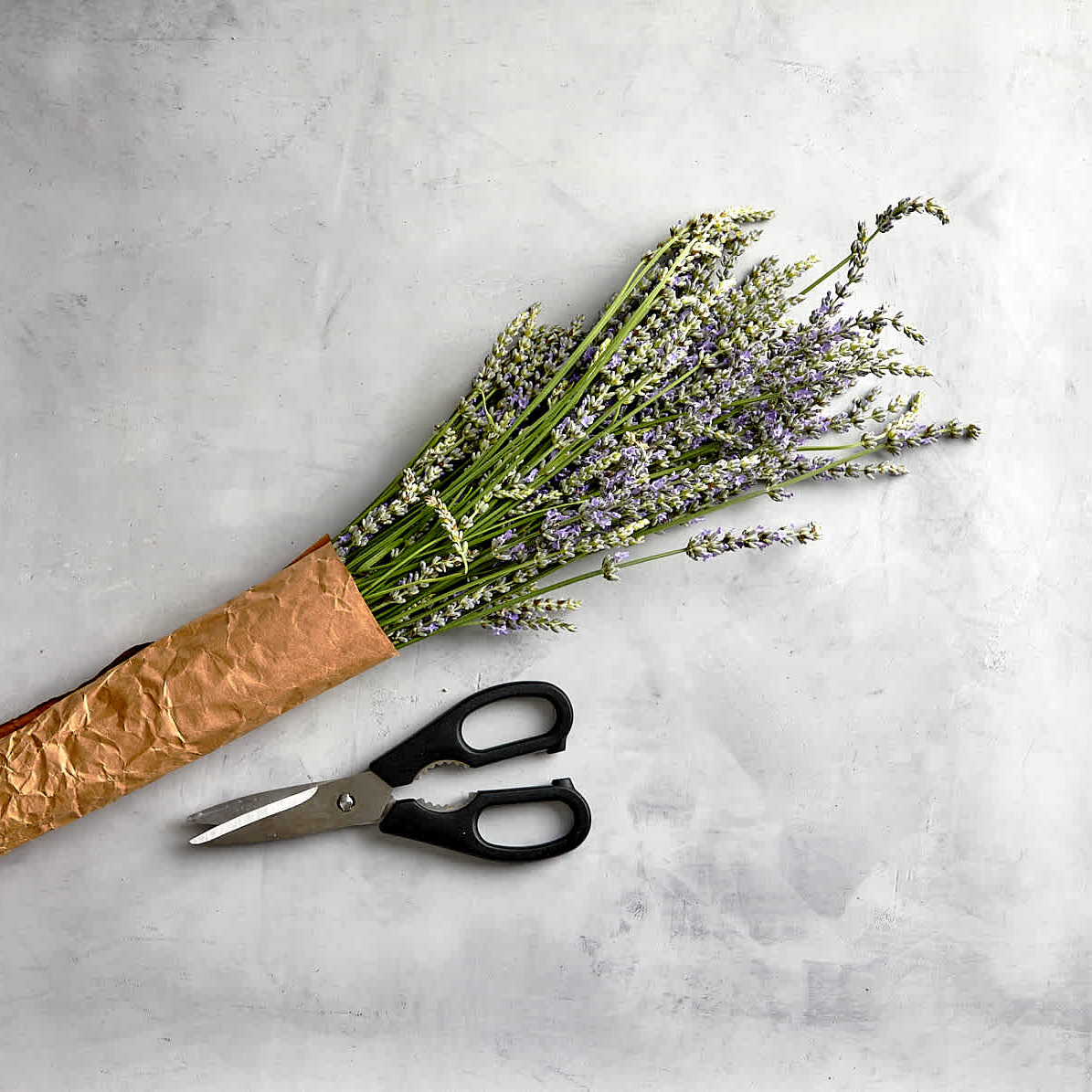 Leftover Lavender rescued at Imperfect for our line of Saved Stems