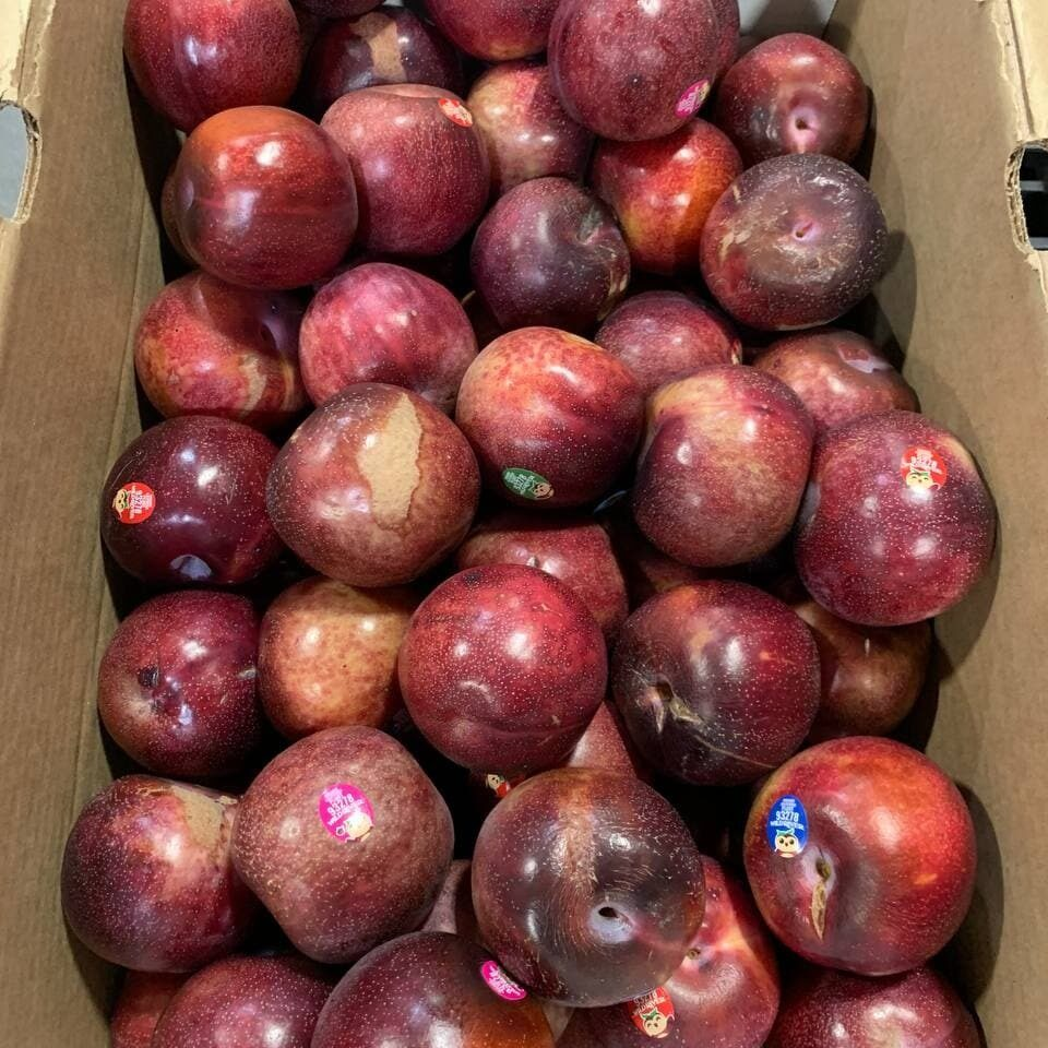scarred and sunburned plums