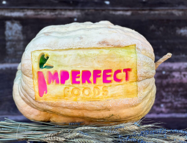 imperfect carved pumpkin by Antonio Wothe